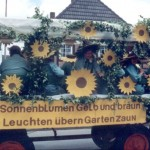 Bild-1401-Sonnenblumen