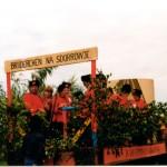 Schützenfest 1981039